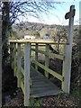 SO5938 : Footbridge in Checkley by Philip Halling