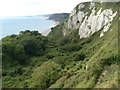 SY2288 : Hooken Cliffs by T W Eyre