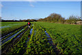 SE6257 : Private farm track leading to Earswick by Ian S