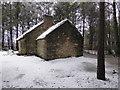 H4379 : Single Room Cabin, Ulster American Folk Park (side) by Kenneth  Allen