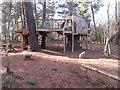 TQ0083 : Alice's Tree House, Black Park by David Hawgood