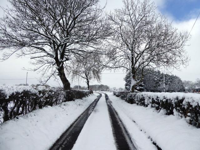 Snow along Racolpa Road