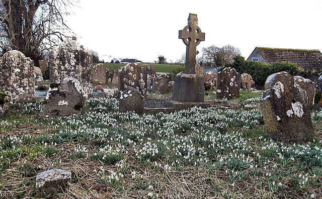 Snowdrops and Headstones