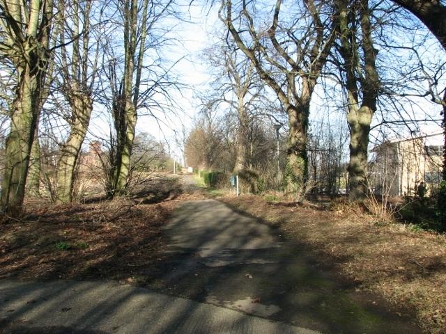 Footpath on Northside