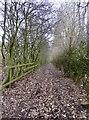 SJ8448 : Public footpath bisecting Wolstanton Golf Course by Jonathan Hutchins