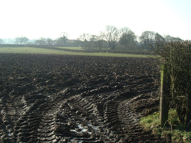 The muddy fields of Antrobus