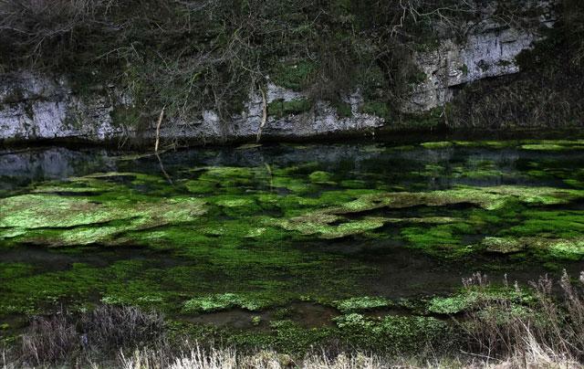 The River Lathkill