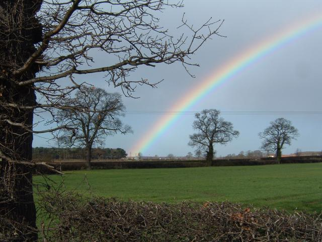 Rainbow over Spark Hagg wood, Near Selby