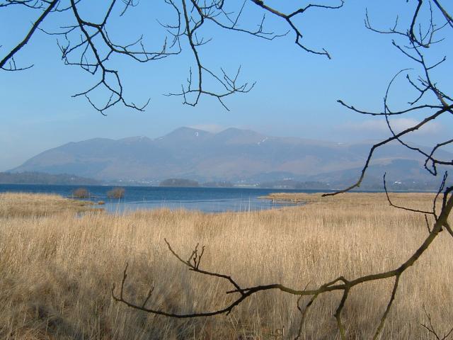 Looking North across Derwent water