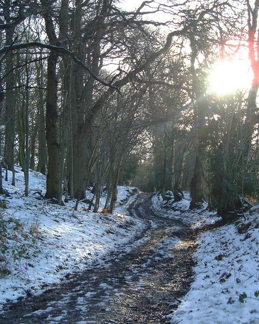 The Sandstone Trail South of Peckforton Castle