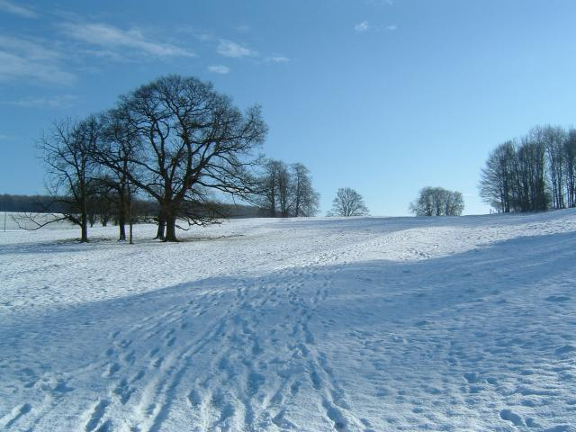 Londesborough Park
