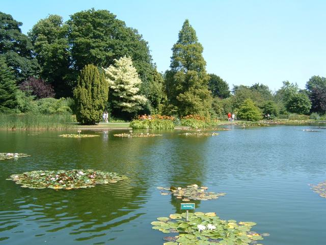 Burnby Hall and Gardens.