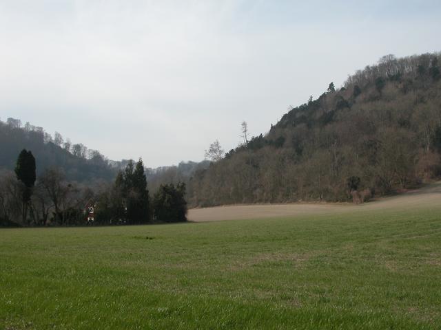 Lutcombe Bottom & Ashford Hill