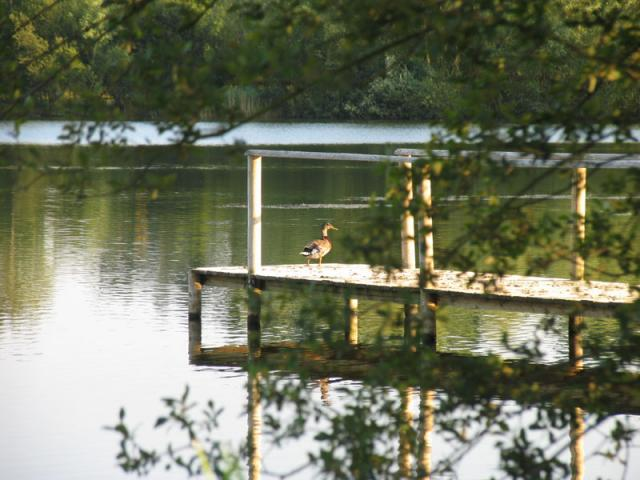 Gravel Pit Lake Fishing Pier located West of Bottle Cottage