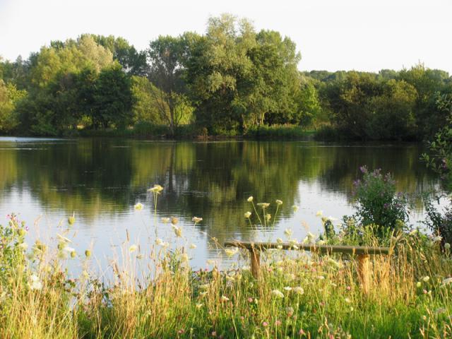 Reflections on Gravel Pit Lake