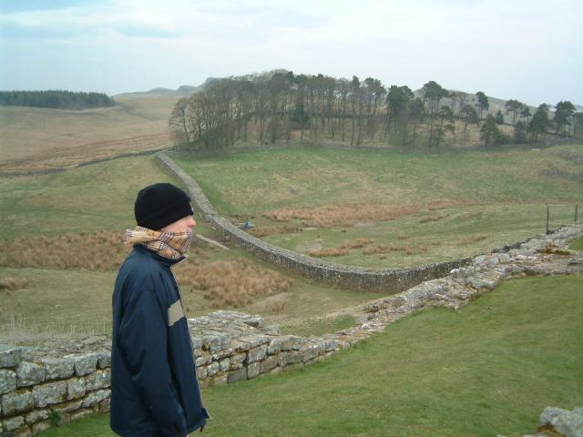 Hadrian's Wall and part of Housesteads