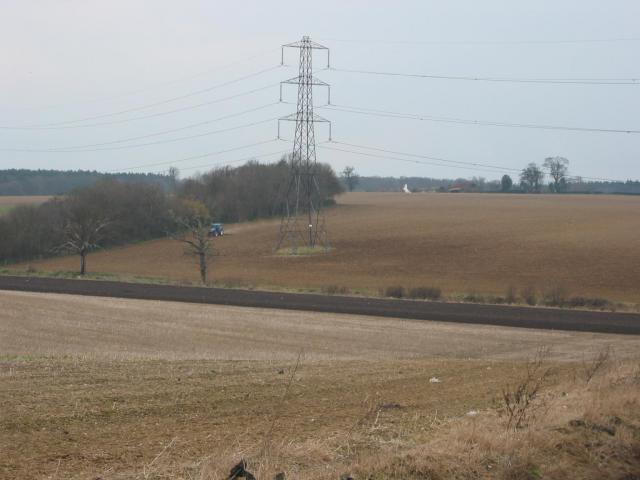 Pylon and copse