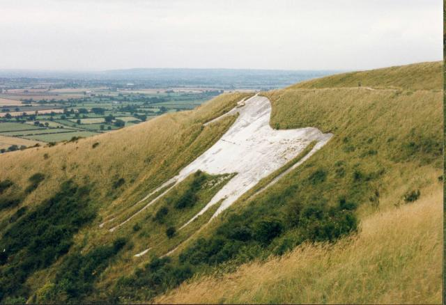 Image result for Westbury White Horse
