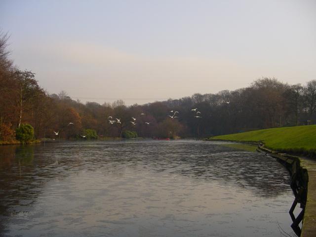 Shibden Park Lake