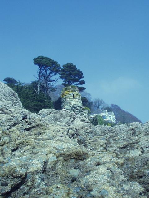 Salcombe Castle