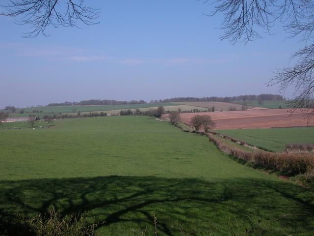 Farmland to the east of Cheriton
