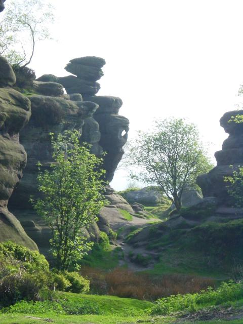 Brimham Rocks - Mother Shipton