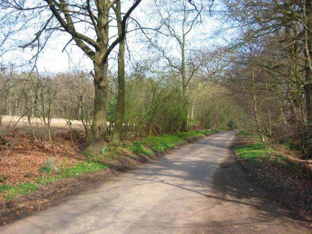 Road from Potters Crouch to Chiswell Green
