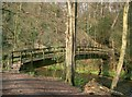 SJ8283 : Giants Castle bridge leading over the River Bollin into Giants Castle Wood by Gary Barber