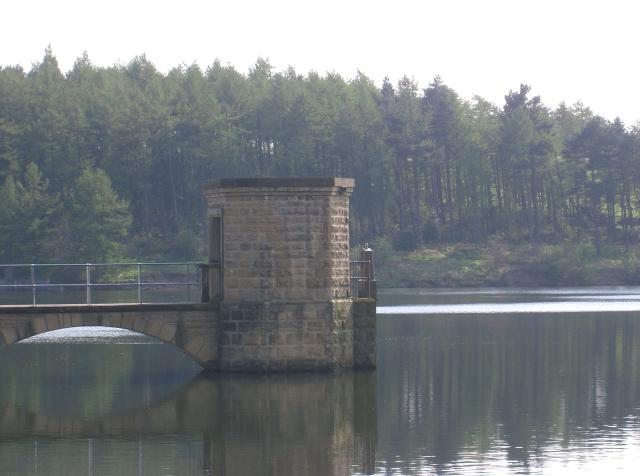 Linacre Top Reservoir in Linacre Wood
