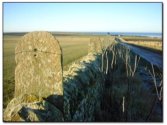 View toward Brimms Ness, Caithness