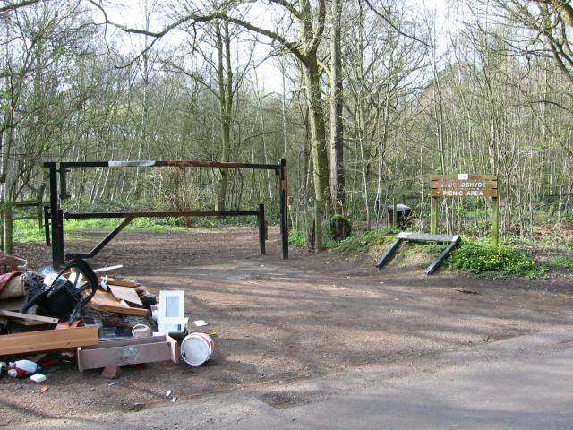Picnic area, Symonshyde Great Wood