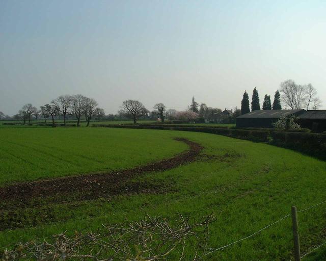 Antrobus fields