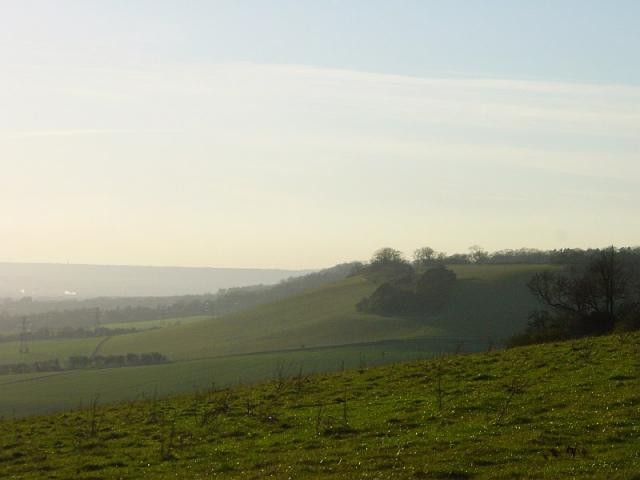 North Downs below Coldharbour