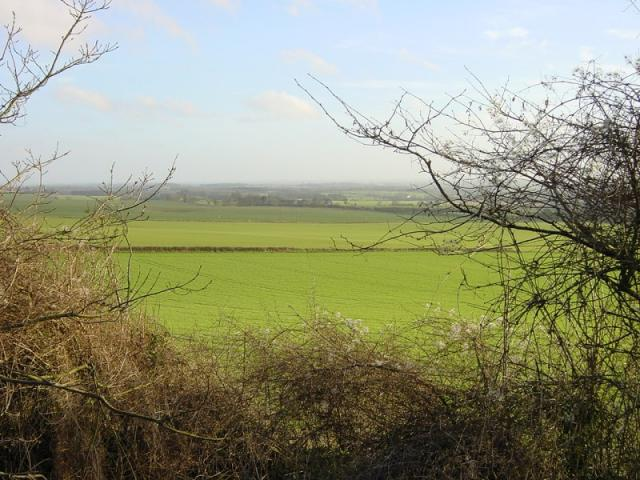 Looking south east towards Charing