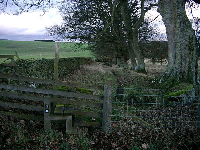 Looking south-east along Dere Street