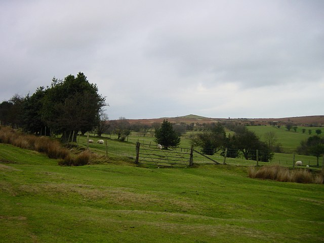 Stapeley Hill