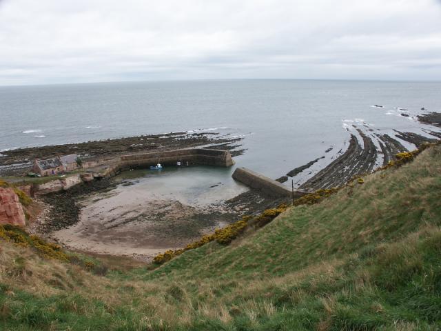 Cove Harbour near Cove