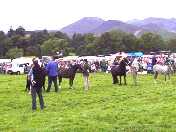 Keswick Agricultural Show - Horse competition