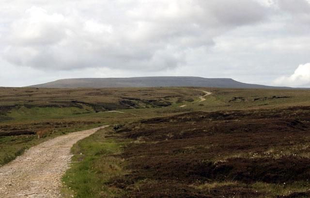Pikeman Hill