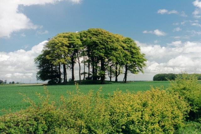 Garrowby Hill Tumulus