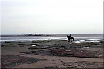 SJ2088 : Hilbre Point and Red Rocks, Hoylake by Rosalind Mitchell
