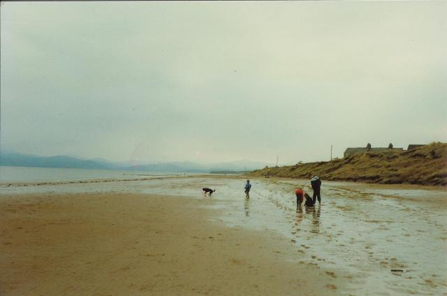 Askam In Furness Beach Dog Ban