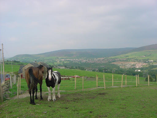 Ridge Hill, Stalybridge