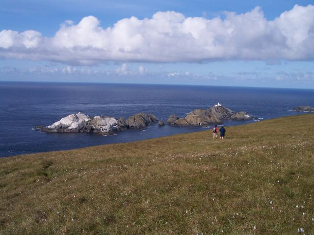 Lower slopes of Hermaness Hill, Unst