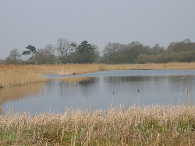 Redgrave and South Lopham Fen