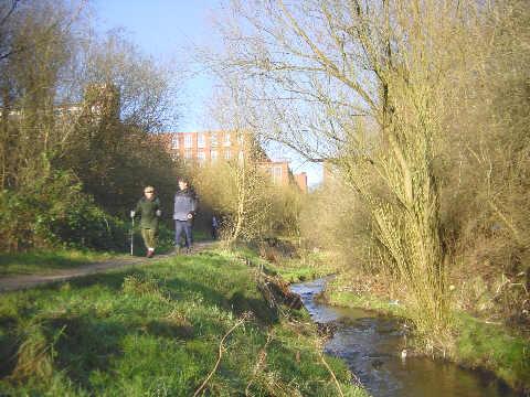 River Medlock near Greenacres