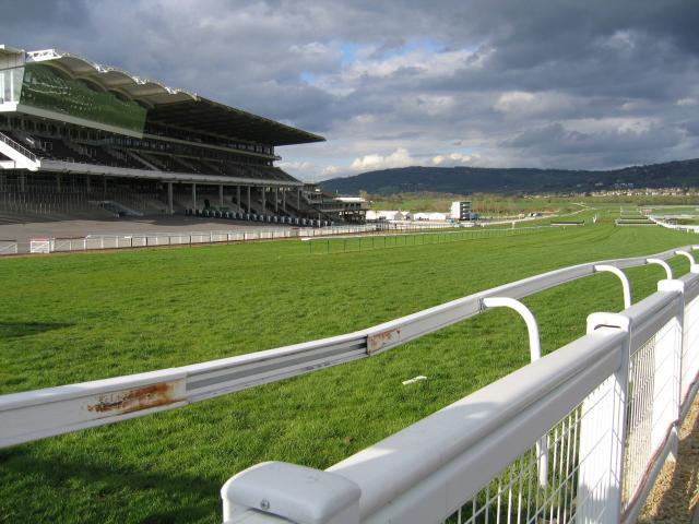 Image result for cheltenham racecourse