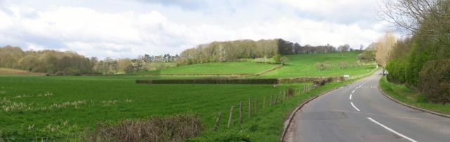Beenham Hill