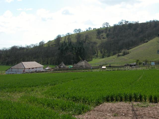 Butser Ancient Farm - by day