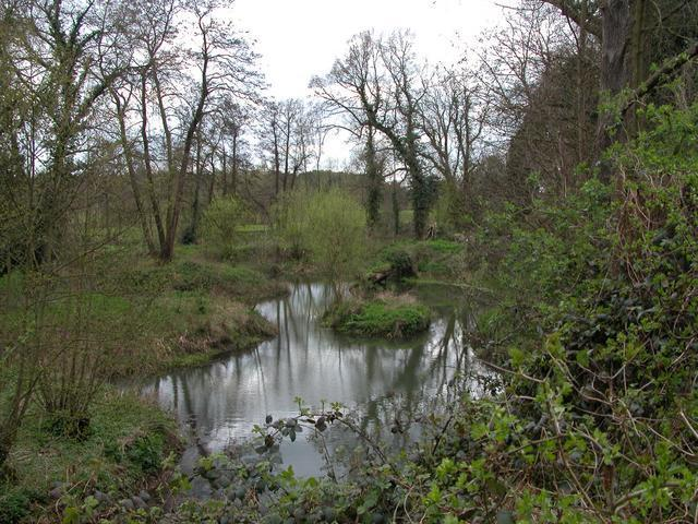 Part of the River Wey, near RHS Wisley
